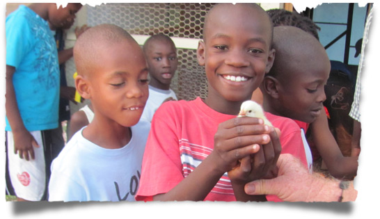 Love A Child Orphans - Learning About Chicken Farming in Haiti