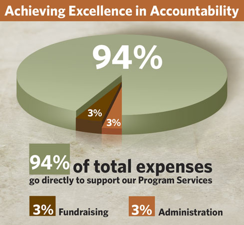 Love A Child Financial Accountability Pie Chart - 2017 Audited Expenses
