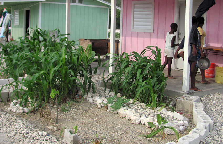 Garden plots to grow corn, other vegetables, and fruit to feed their families.