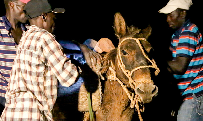 The people who live up in the mountains have to walk for several hours to come down with their donkeys to pick up their food.