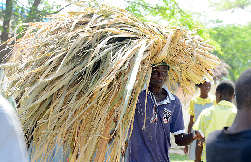 Now local farmers still grow sugarcane as independent farmers, and they sometimes sell their cane in local markets.