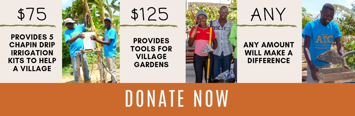 Ways-You-Can-Help-Haitian-Families-Today-Donate-to-Agricultural-Training